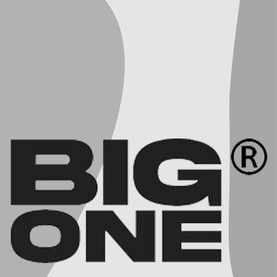 big one logo
